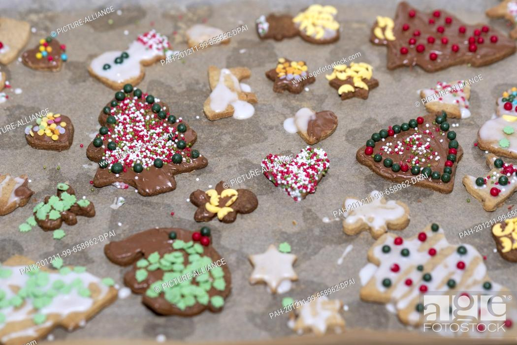 Stock Photo: 10 December 2020, Saxony-Anhalt, Magdeburg: Homemade Christmas cookies lie on a baking tray with baking paper. Photo: Stephan Schulz/dpa-Zentralbild/ZB.