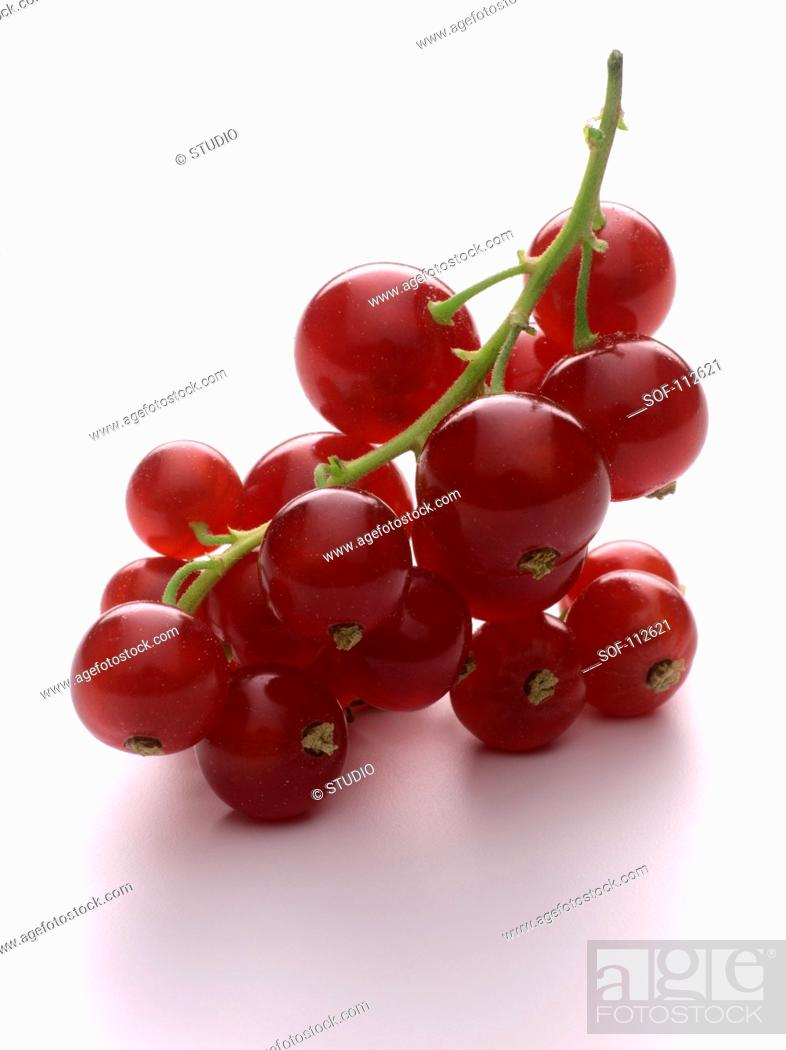 Stock Photo: Small bunch of redcurrants.