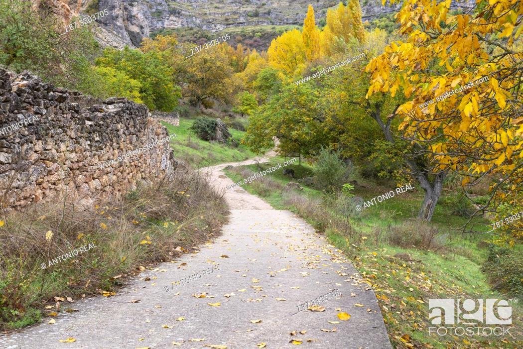 Stock Photo: Path. Parque Natural Barranco del Río Dulce. Pelegrina. Guadalajara Province, Castile-La Mancha, Spain.