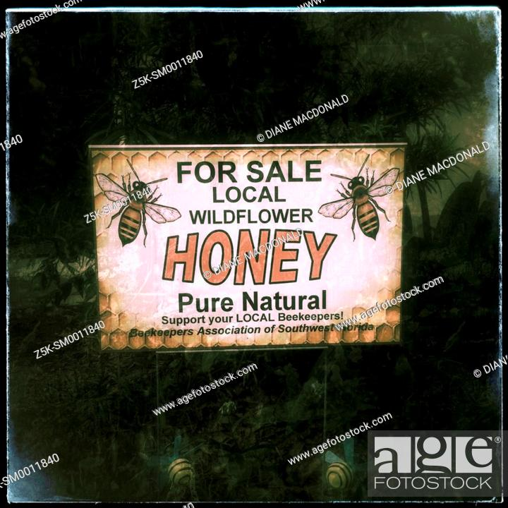 Stock Photo: Local honey for sale sign.