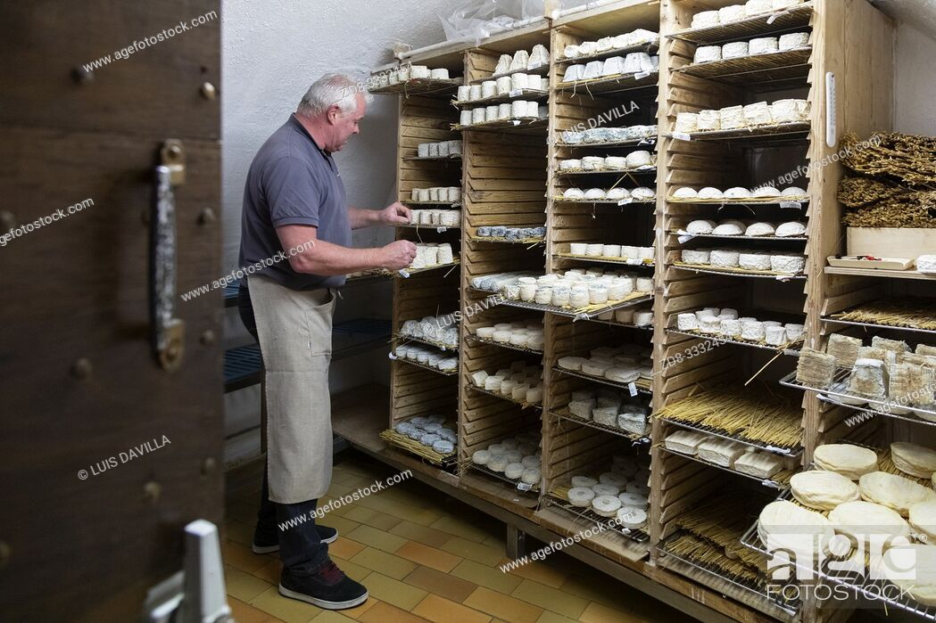 Stock Photo: ripening room in the Cheese shop Xavier. Toulouse. France.