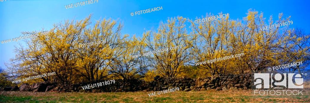 Stock Photo: sky, landscape, spring, season, scenery, panoramic view, nature.