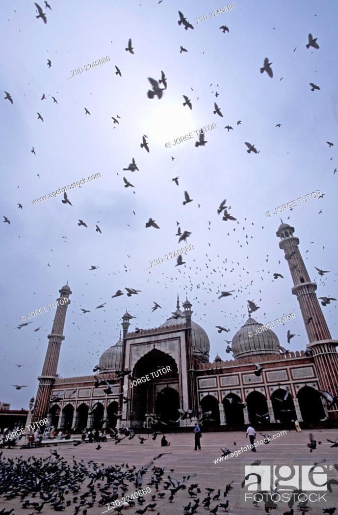 Stock Photo: Main Facade Masjid-i Jahan-Numa, Jama Masjid Old Delhi India mosque with doves pigeon.
