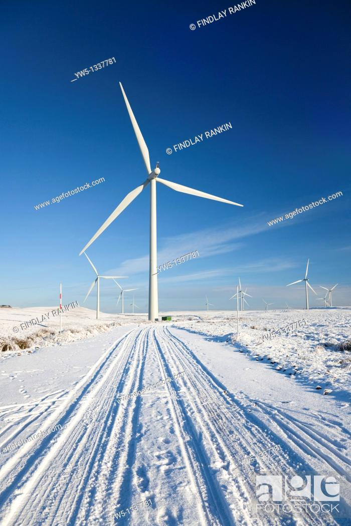 Stock Photo: Whitelee Wind Turbine farm, alternative energy generation by turbines, Eaglesham Moor, Glasgow, Scotland, UK  Whitelee Windfarm is the largest in Europe  Each.