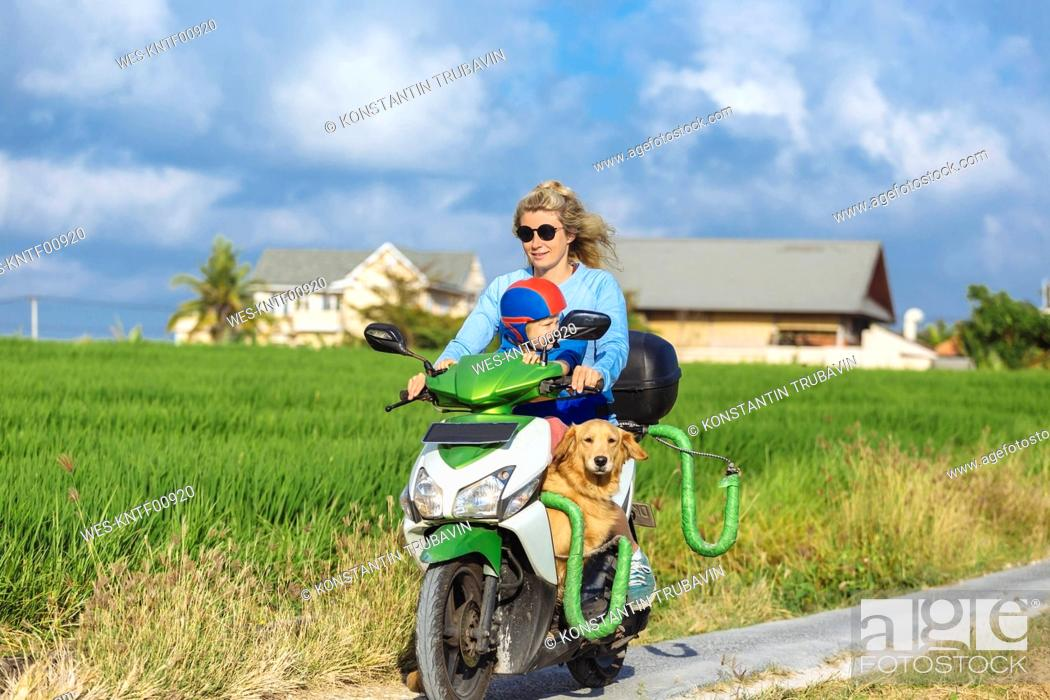 Stock Photo: Woman with child and dog riding motor scooter on country lane.