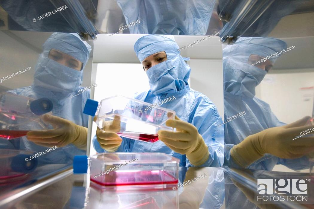 Stock Photo: SAS window, clean room, culture container, DMEM (DulbecoÂ's Modified EagleÂ's Medium), biopharmaceutical lab, development and production of innovative drugs.