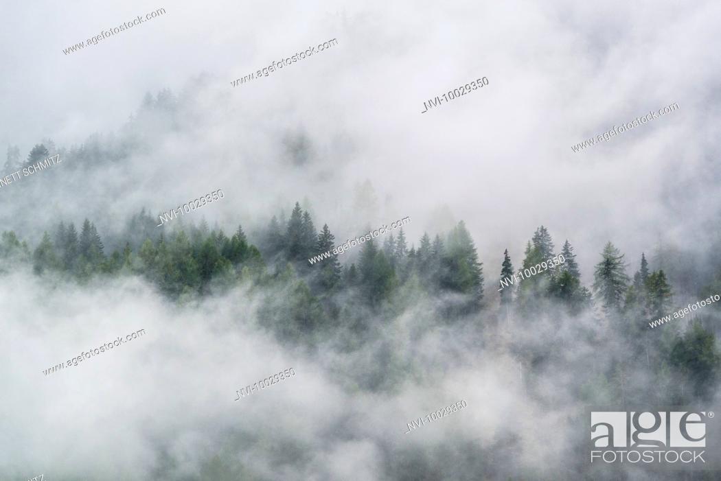 Imagen: Fog in the Hohe Tauern National Park, Austria.