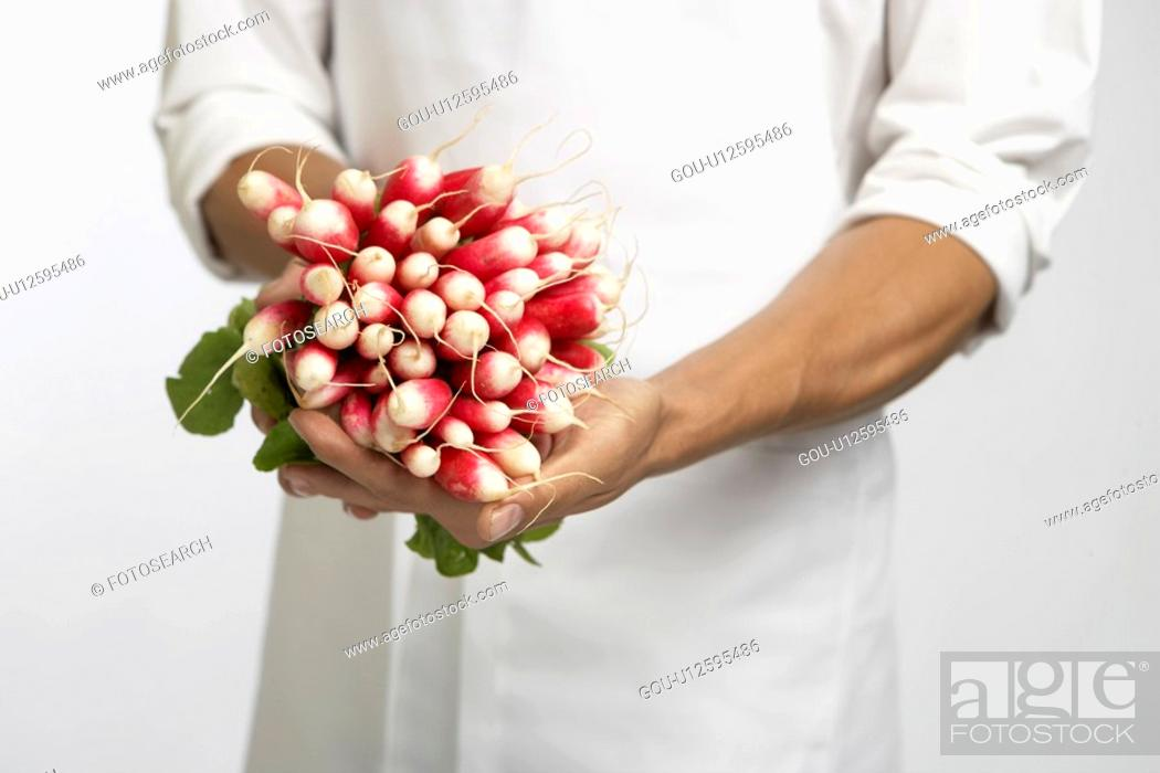 Stock Photo: Chef holding bunch of radishes (mid section).