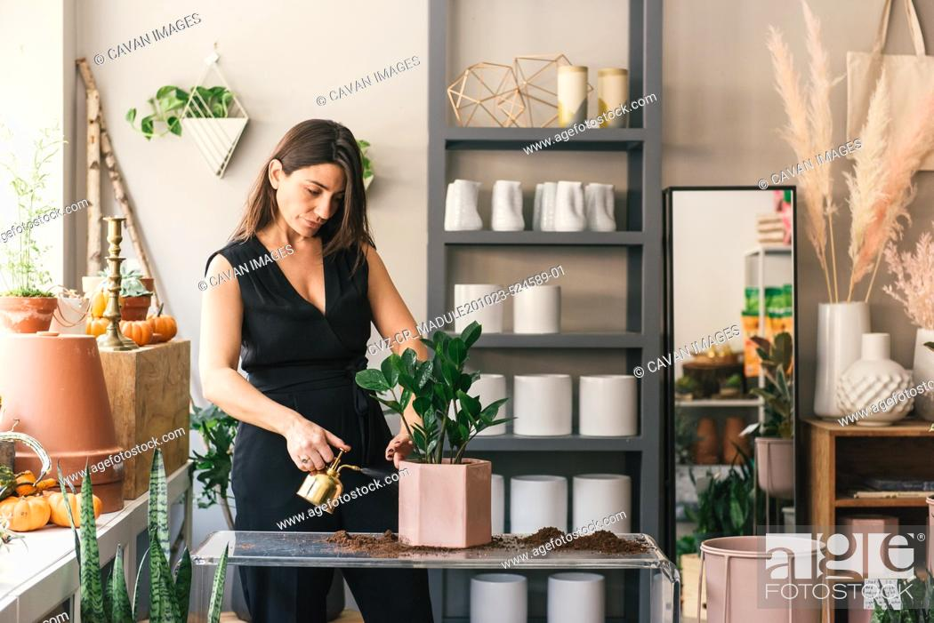 Stock Photo: Florist watering new potted plant in the middle of her store.