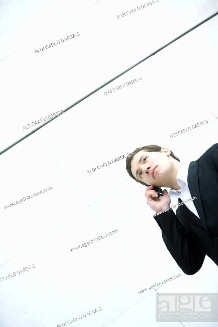 Stock Photo: Businessman talking on cell phone, low angle view.