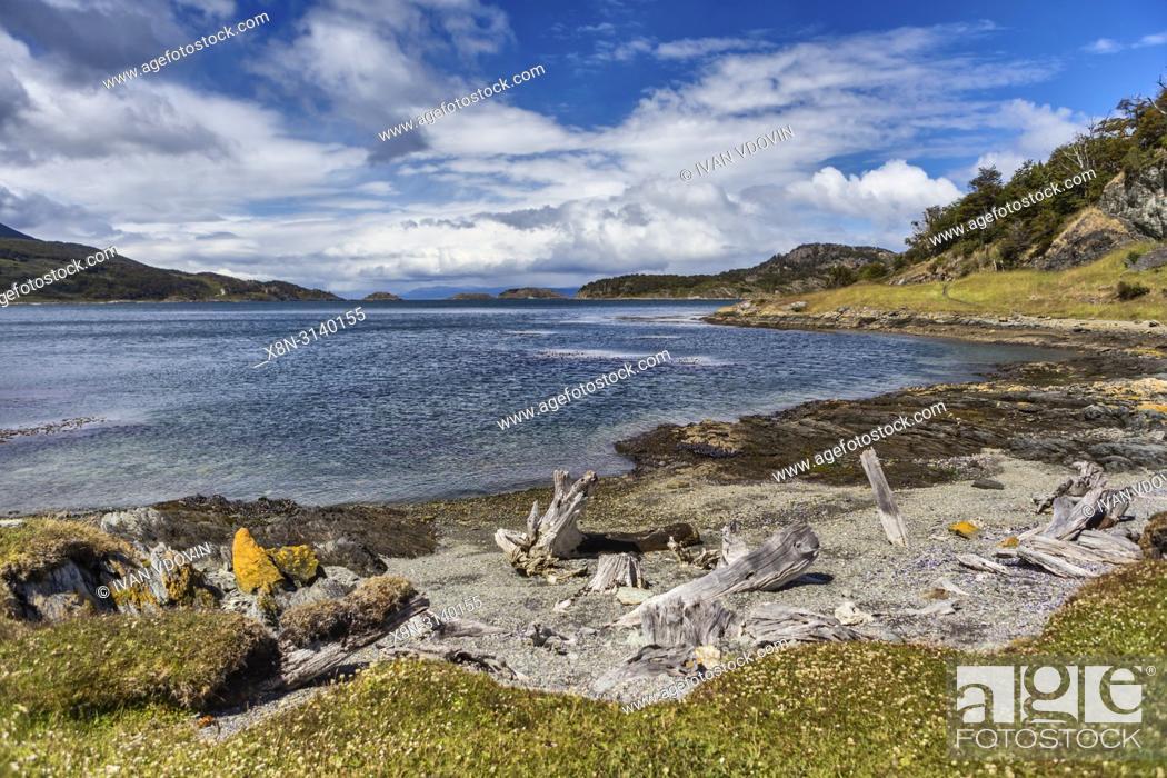 Stock Photo: Tierra del Fuego National park, Isla Grande del Tierra del Fuego, Tierra del Fuego, Antartida e Islas del Atlantico Sur, Argentina.