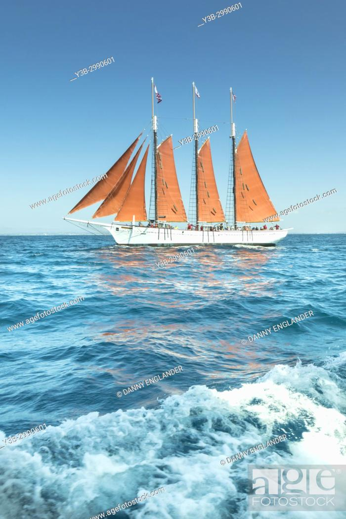 Stock Photo: Antique, vintage sailing ship with red sails on the Pacific Ocean, with a bright blue sky.