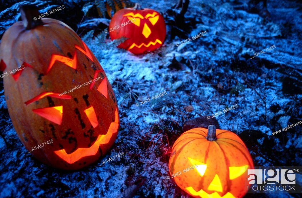Stock Photo: High angle view of jack-o-lanterns in a forest.