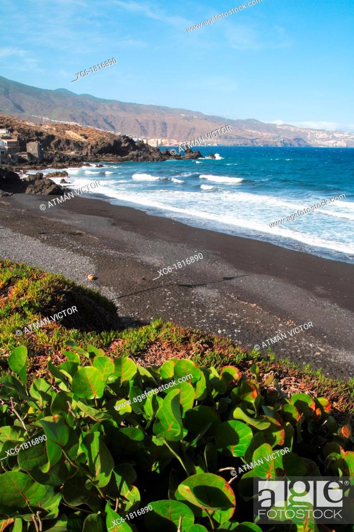 Stock Photo: Las Viudas beach in Arafo Tenerife.