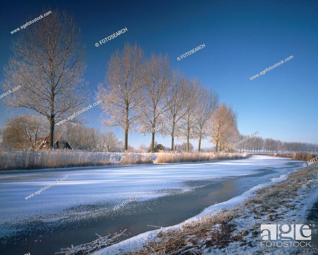 Stock Photo: Snowy landscape.