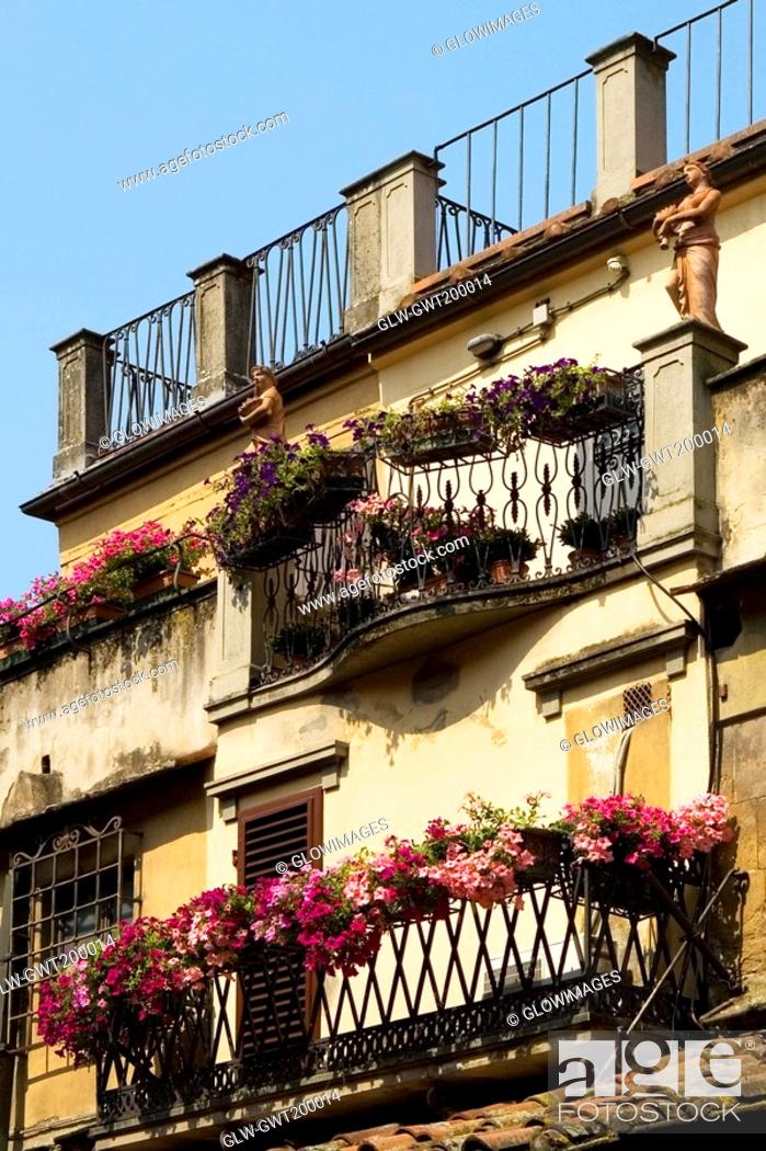Stock Photo: Low angle view of a building, Florence, Tuscany, Italy.