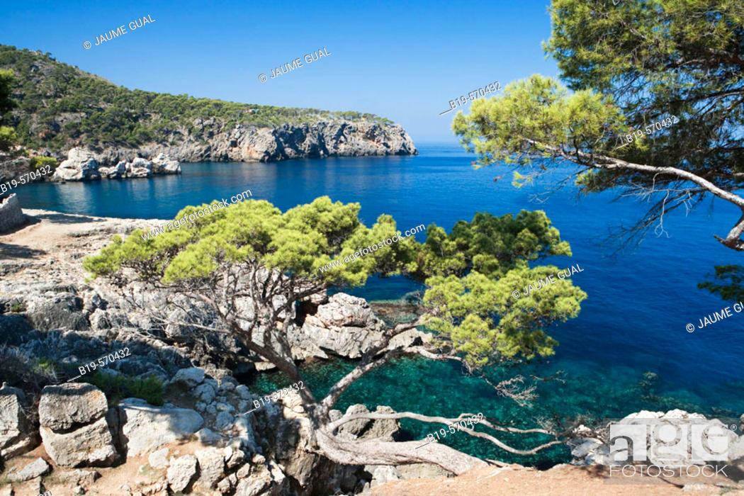 Stock Photo: North coast, Llucalcari. Mediterranean Sea, Serra de Tramuntana. Majorca, Balearic Islands, Spain.