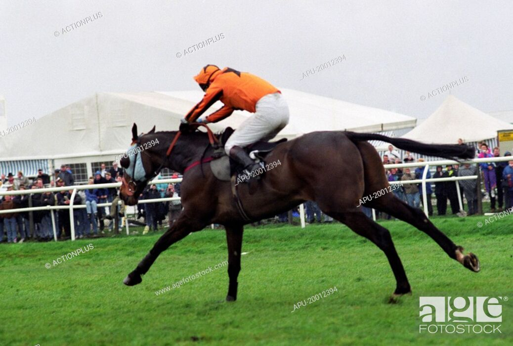 Stock Photo: Horse and Jockey land over steeplechase jump and gallop forward.
