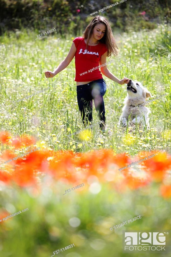 Stock Photo: Girl and dog.