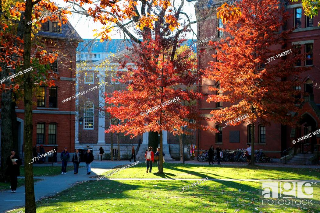 Stock Photo: Scenics of Harvard Yard, the central campus of Harvard University, in Indian Summer Fall.