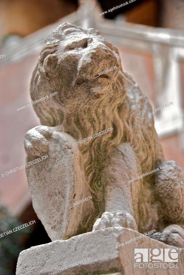 Imagen: lion.