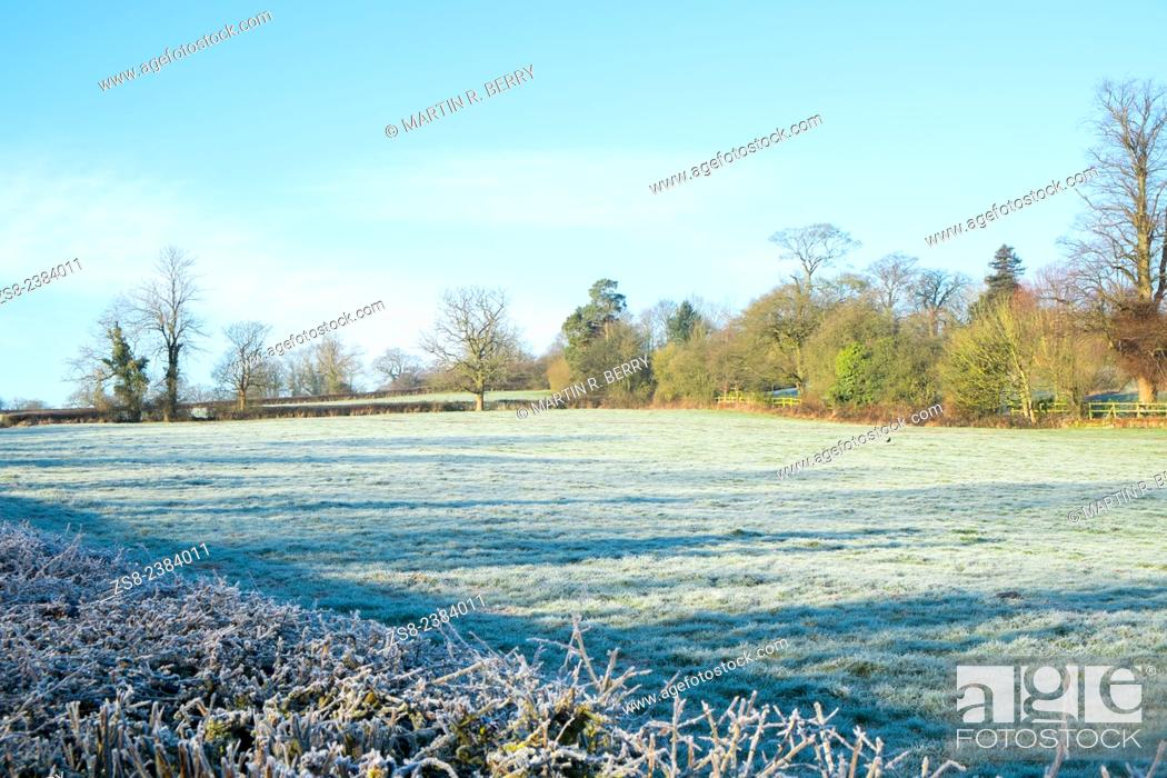 Stock Photo: Derbyshire countryside near shottle, england.