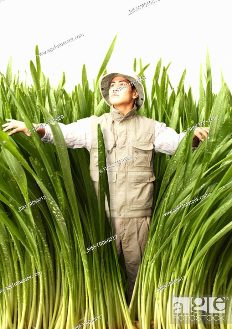 Stock Photo: Explorer walking through tall grass.