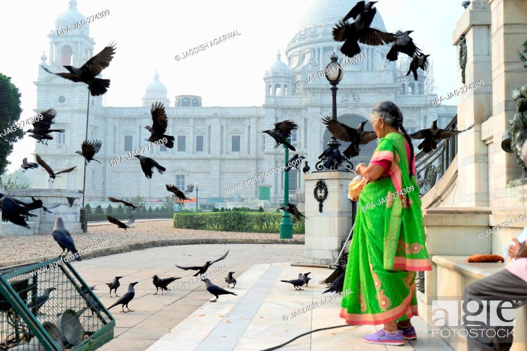 Stock Photo: Woman feeding crows, Victoria Memorial, Kolkata, West Bengal, India, Asia.