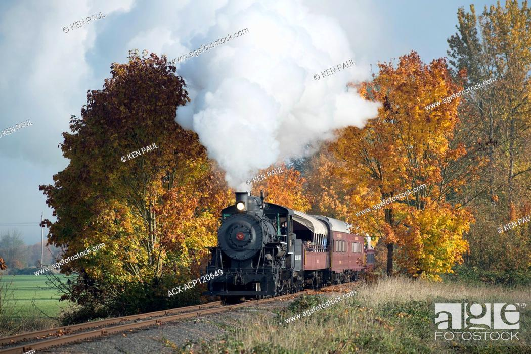 Stock Photo: The Chehalis-Centralia Railroad fall excursion steam train. Chehalis, Washington, USA.