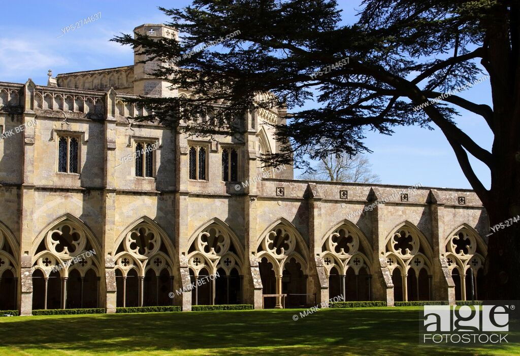 Stock Photo: Cloisters in Salisbury Cathedral Wiltshire England.