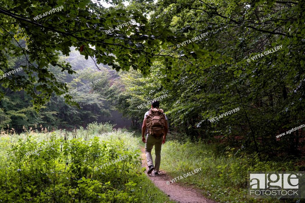 Photo de stock: Bulgaria, Balkan Mountains, hiker with backpack on hiking trail, rear view.