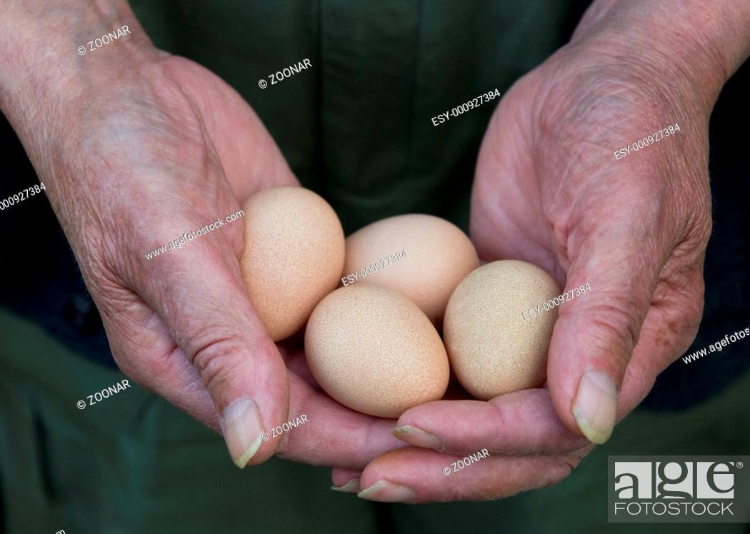 Stock Photo: Man Holding Eggs.