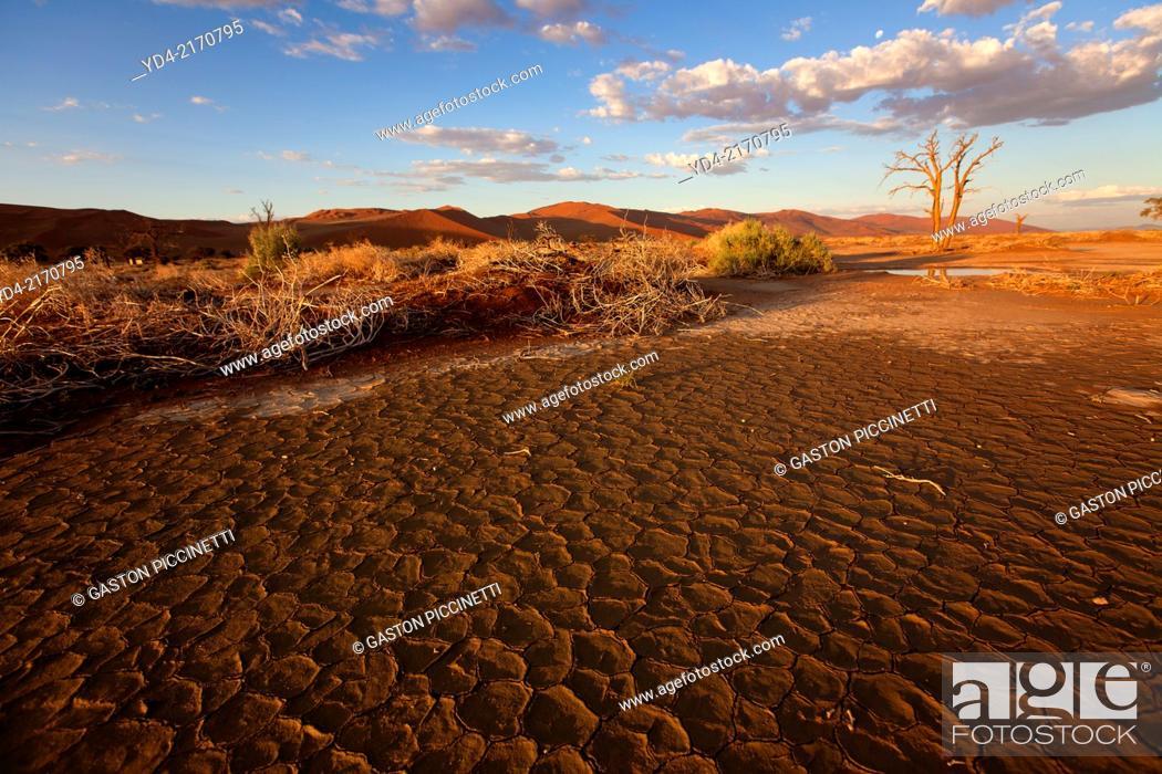 Stock Photo: Ses Riem in rainy season, Namib-Naukluft National Park, Namib desert, Namibia.