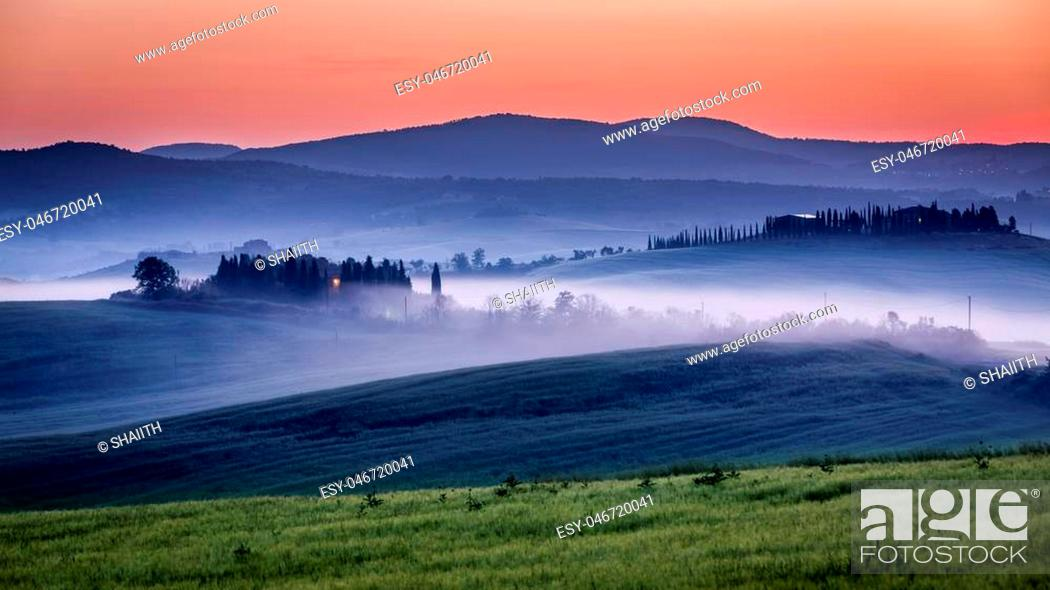 Stock Photo: Farm of olive groves and vineyards in foggy morning.