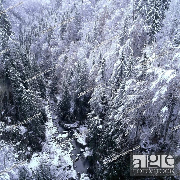 Stock Photo: Winter landscape, valley, brook, forest, snow-covered,.