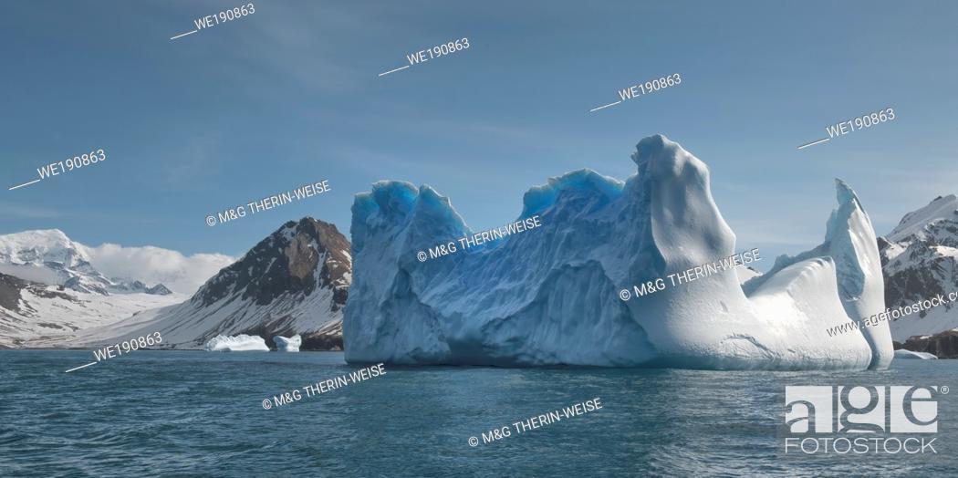 Stock Photo: Ocean Harbour, Floating Icebergs, South Georgia Island, Antarctic.