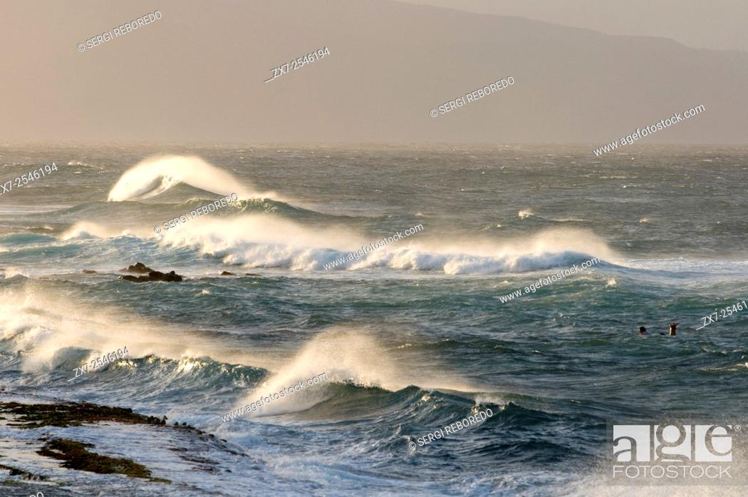 Stock Photo: Wawes in Hookipa Beach. Maui. Hawaii. Hookipa Beach Park is one of the top spots for ocean sports and recreation in Maui.