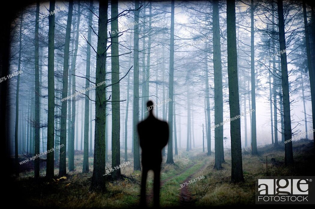 Stock Photo: man silhouette in the forest, inspiration,.