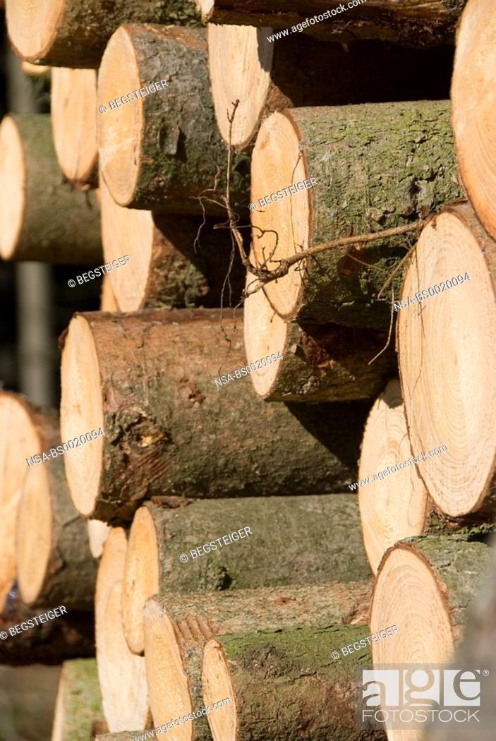 Imagen: stack of wood.
