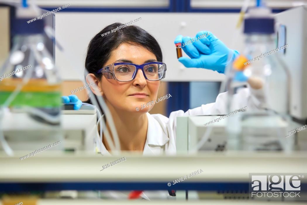 Stock Photo: UHPLC, HPLC (UV/VIS and Fluorescence) and HPLC-MS Chromatographs. Pharmaceutical Development Laboratory. Pre-formulation.