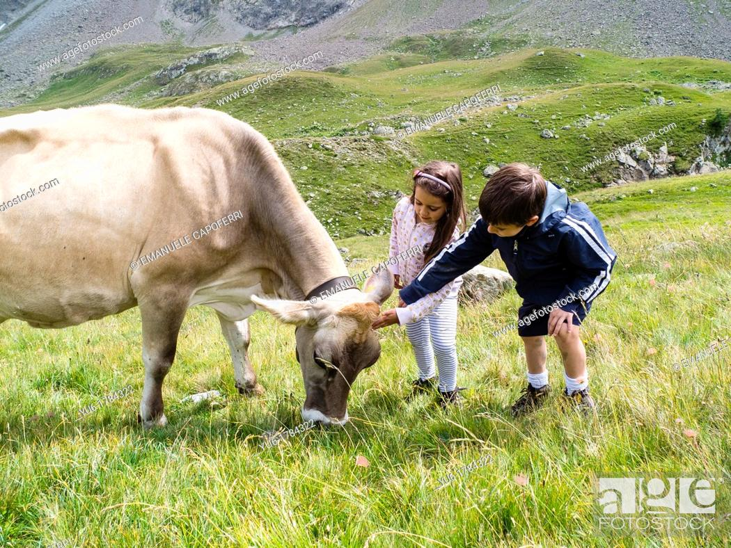 Stock Photo: Children cherish a cow in the mountains.