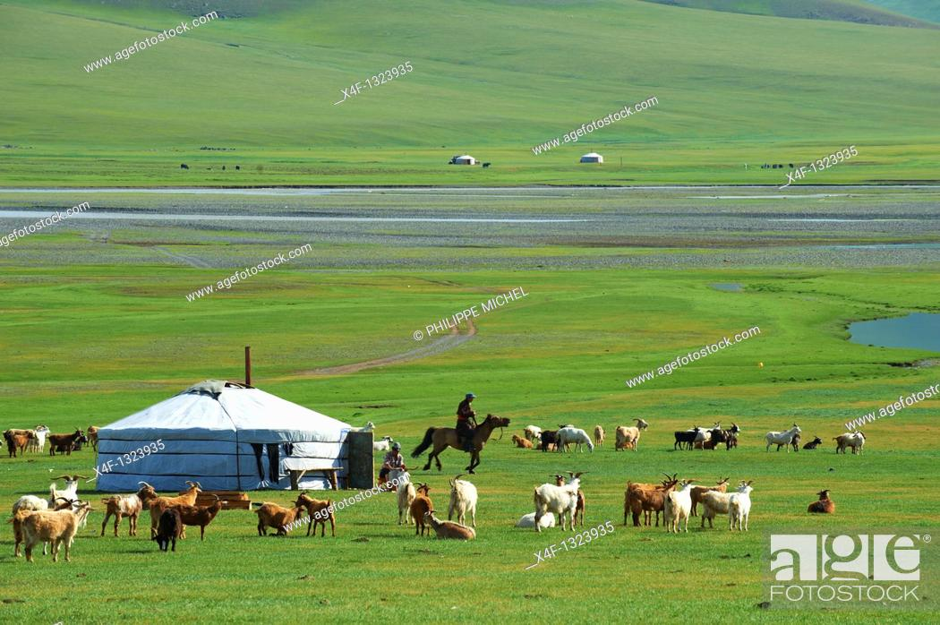 Stock Photo: Mongolia, Ovorkhangai province, Yurt camp, Orkhon valley.