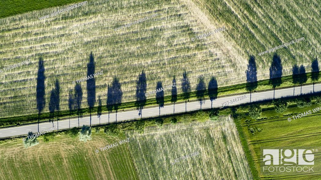 Stock Photo: Road through agricultural fields in springtime from above with tree shadows, Baden Württemberg, Germany.