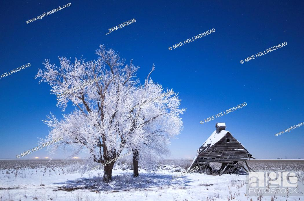 Stock Photo: Moon lights frost covered trees and collapsing barn in western IA during bitter cold freezing fog in sub-zero F temps.