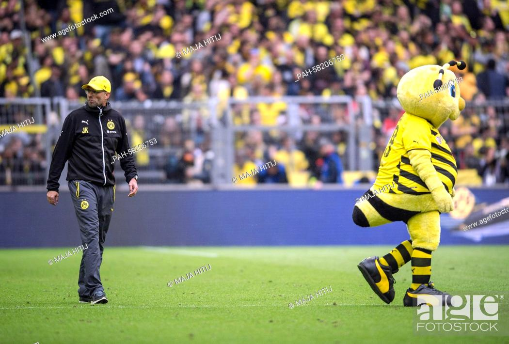 Dortmund S Trainer Juergen Klopp Stands Next To Mascot Emma After The German Bundesliga Soccer Match Stock Photo Picture And Rights Managed Image Pic Pah 58206753 Agefotostock