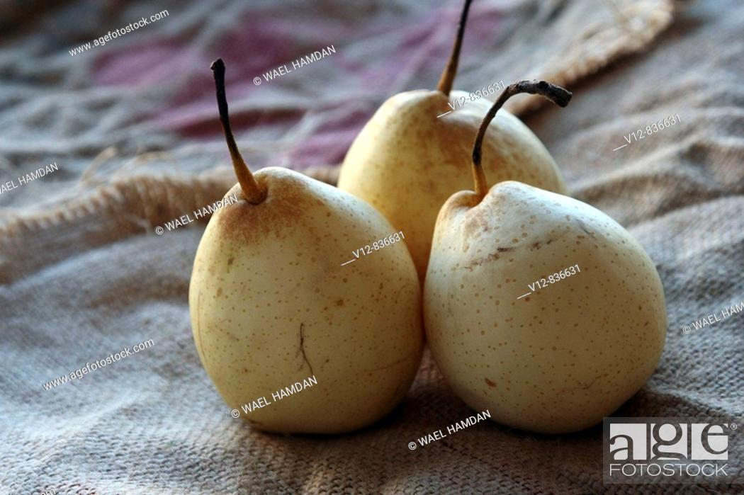 Stock Photo: Pears fruit.
