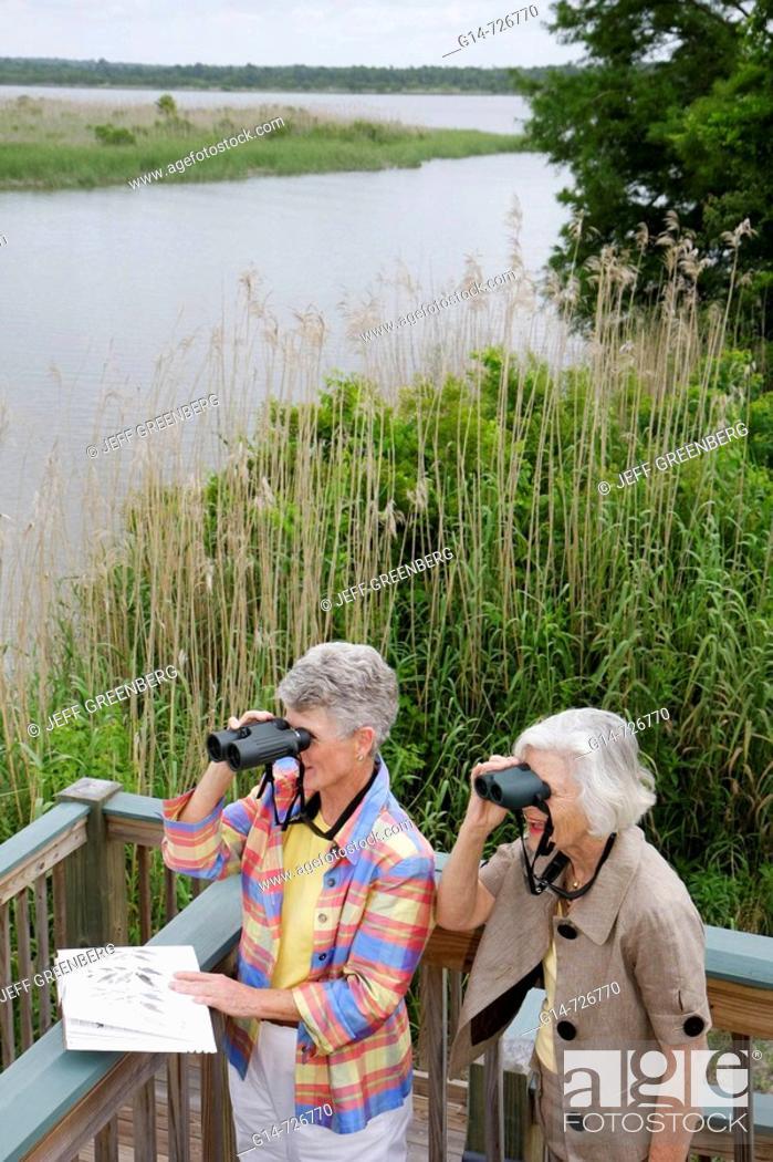 Stock Photo: Alabama, Mobile Bay, Spanish Fort, Mobile Tensaw River, 5 Rivers Delta Resource Center, nature, education, woman, women, senior, binoculars, birding,.