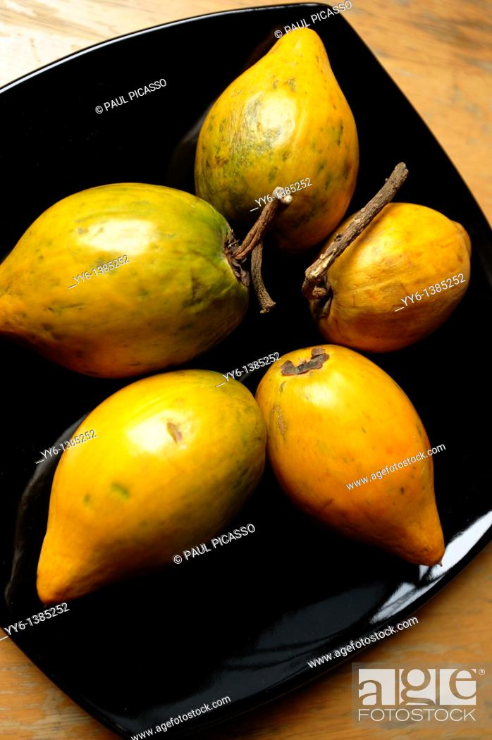 Stock Photo: Dien taw known as Lucuma, originally from south america weird and strange fruit grown in doi ang khang, near chiang mai , northern Thailand.