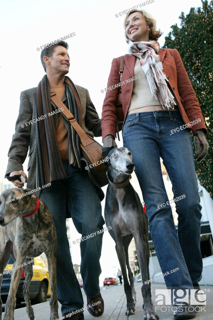 Stock Photo: Couple walking dogs.