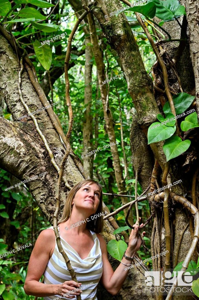 Stock Photo: Woman in rain forest, Kauai, Hawaii, USA.